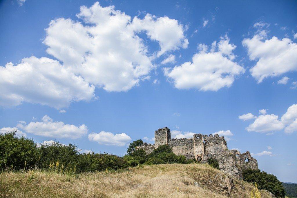 Cetatea Șoimoș